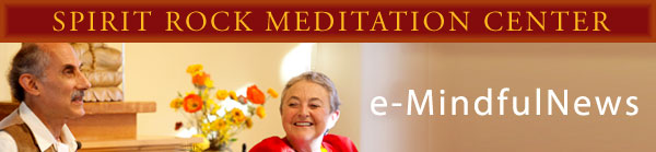 e-mindful news masthead