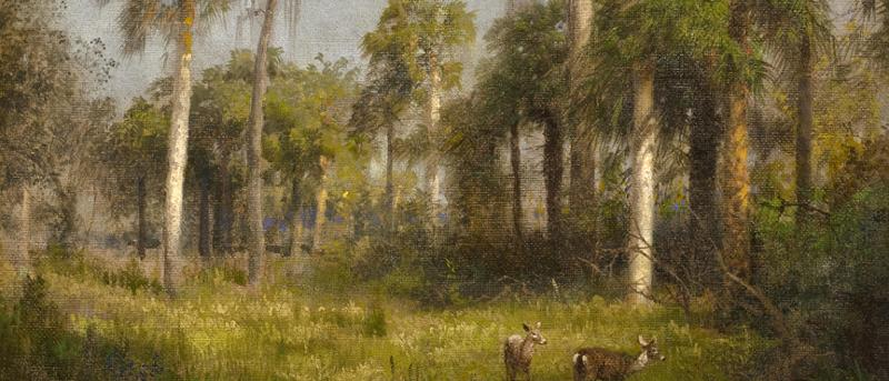 Florida 1888