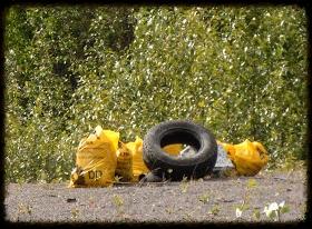 Trash on the Kenai