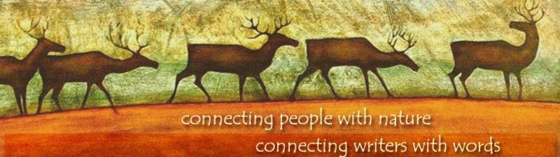 Page Lambert_ Connecting People with Nature_ and Writers with Words Image