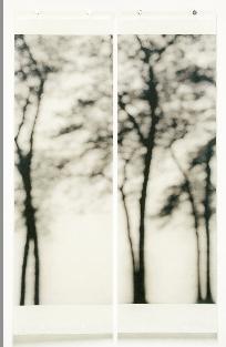 jeri eisenberg