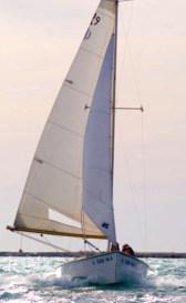 Rhodes 19
