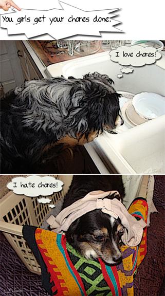 love hate chores