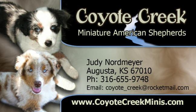 Coyote Creek