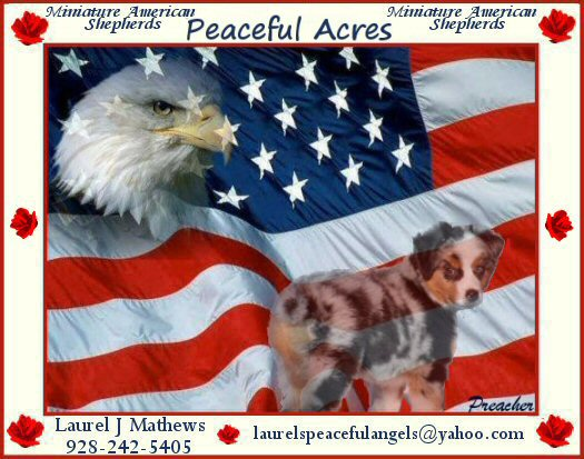 Peaceful Acres