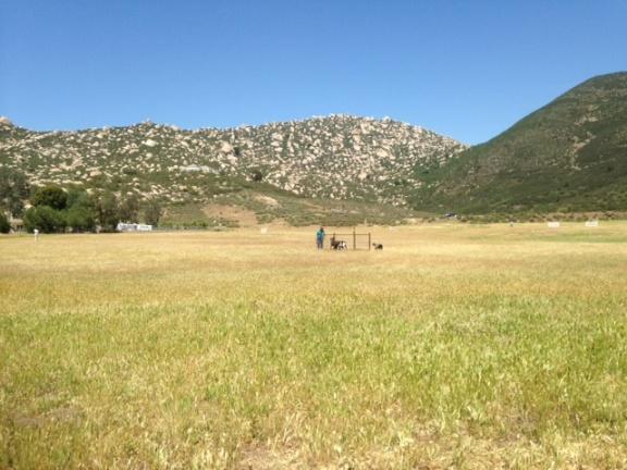 Mattie USBCHA Ranch Course