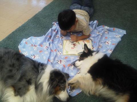 Reading to Neko and Hula