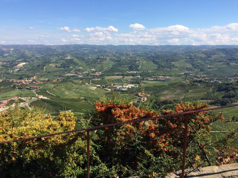 Piemonte near Barolo