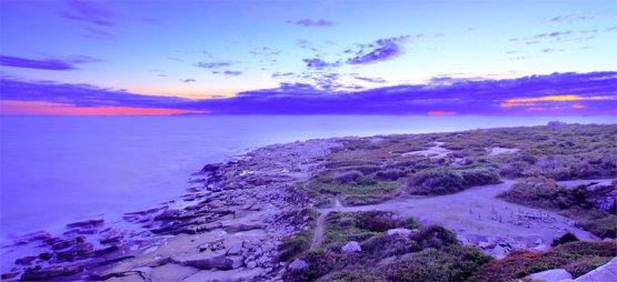 Shore line at Halibut Point