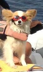 Mikas new glasses