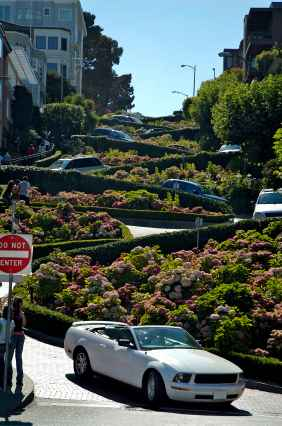 "Lombard St.- The ""Crookedest Street in the World"""