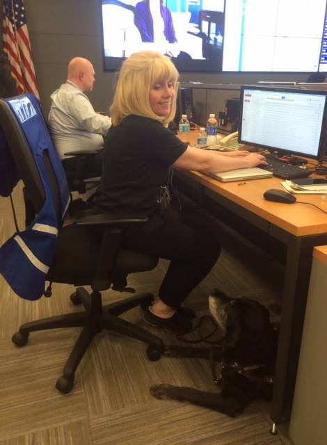 Director of Emergency Preparedness sits at desk with computer in command center with guide dog under desk looking up at her.