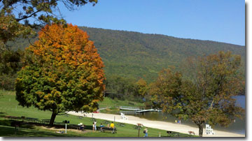 mage_ Rocky Gap State Park with tree on left and beach area with lake to right.  Tree lined mountain in background.