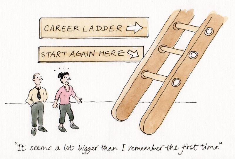 Ladder cartoon career change