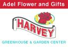 Harveys Flowers Adel IA