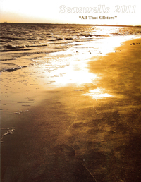 Seaswells Cover
