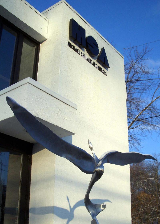 MSA office with Bird Arising