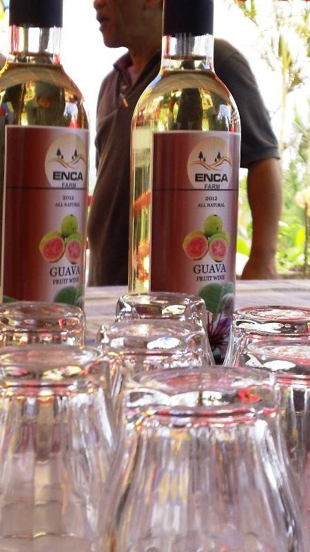 Guava Wine