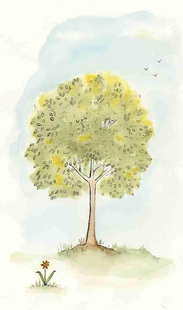 1tree1flower.jpg