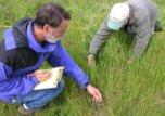 Adults working on prairie