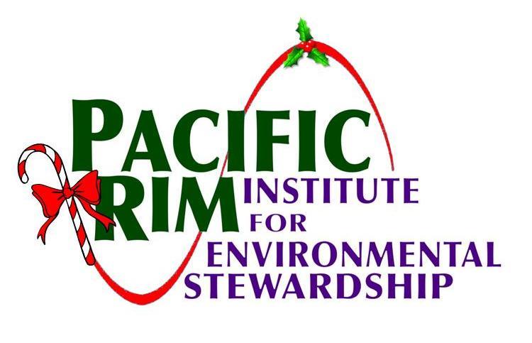 2011 Christmas Logo