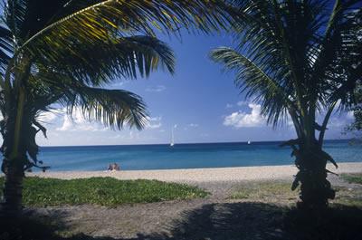 sunny-beach-view.jpg