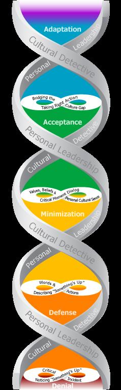 CD-PL-DMIS graphic