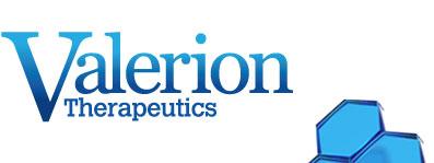 Valerion Logo