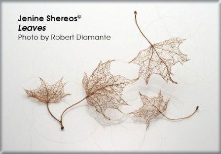 Shereos_Leaves