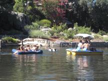 Williams Pond fun