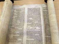 TBC Torah Scroll