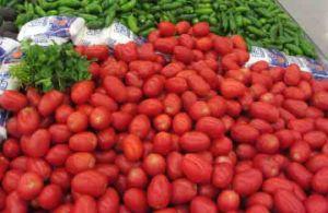 Mexican Food Distributors Florida