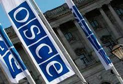 OVSE - logo