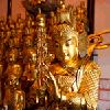 Worshipping Idols in Shanghai
