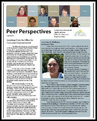 The Peer Perspectives Cover