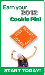 Cookie Pin Banner Vert