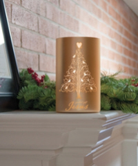 Frosted Glass Hurricane, click to buy figtreebooks.ca