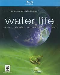 waterlife film poster