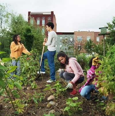 community garden baltimore