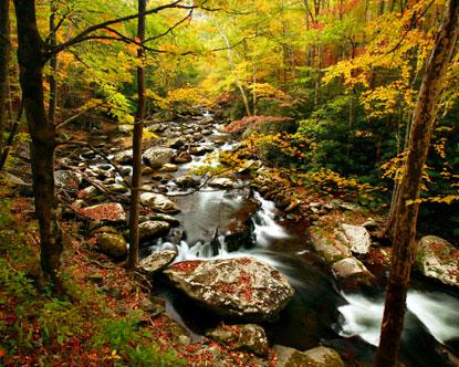 Appalachain Trail Hike