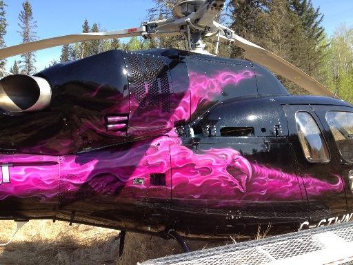 Phoenix Helicopter 1