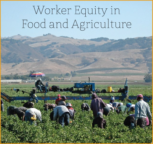 Worker Equity in Food and Agriculture