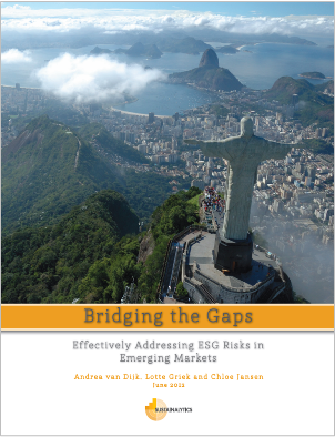 RI in Emerging Markets