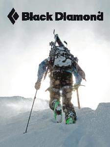 BD Winter 2013 eNews ad