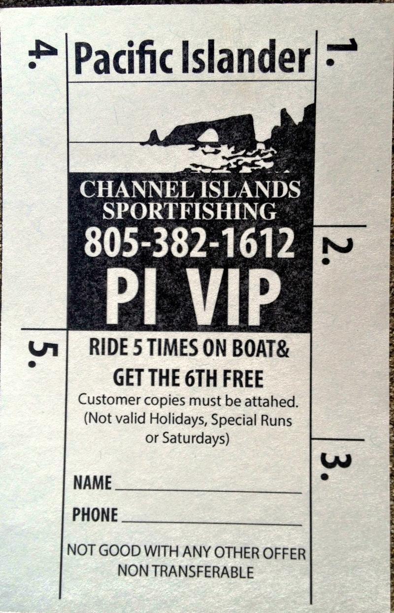 PIVIP Ride 5