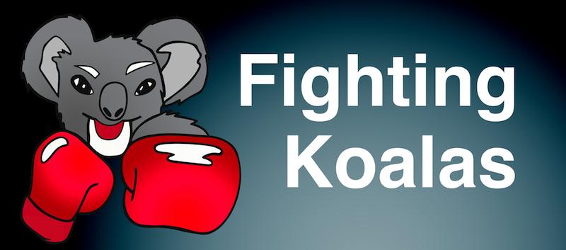 fighting koalas