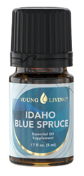 Idaho Blue Spruce Essential Oil