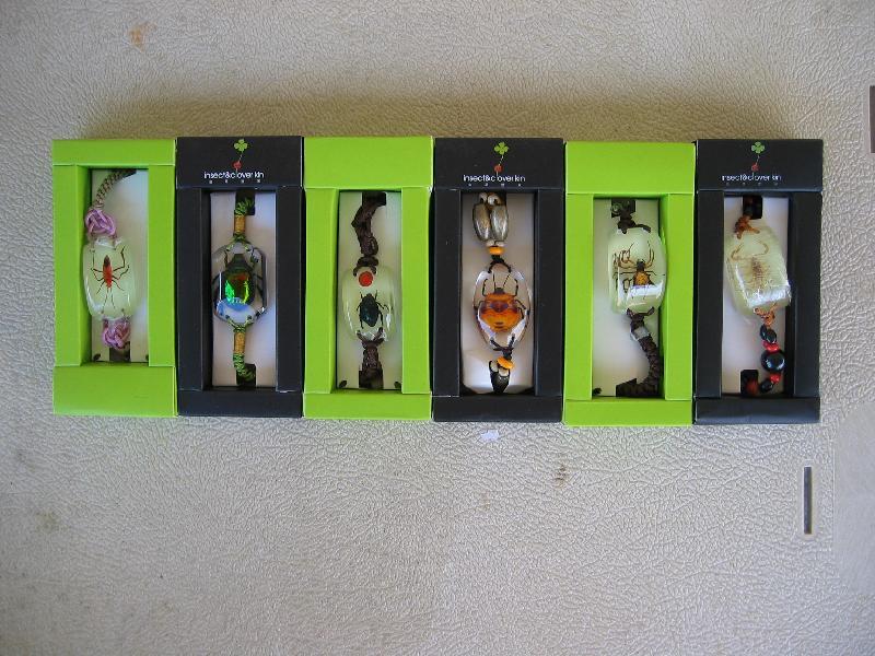 Insect Bracelets
