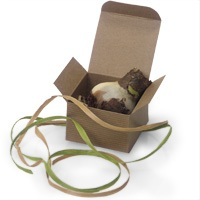 Eco Wedding Box