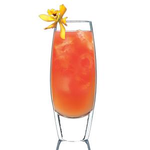 Orange Cocktail, Yellow Flower